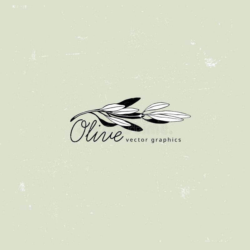 Minimaliste Olive Branch Conception de calibre de logo de vecteur Icône de concepts de nourriture fraîche, d'Olive Oil, de jardin illustration stock