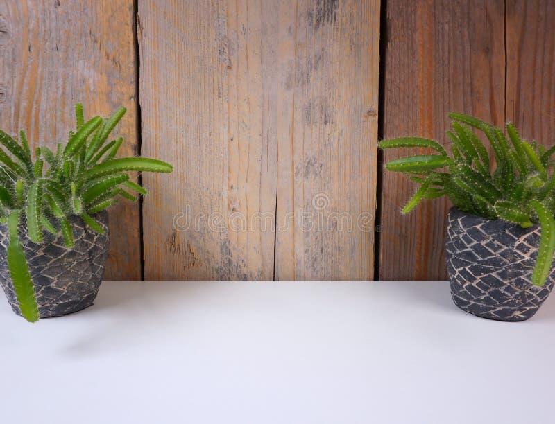 Minimalistic房子在微型石罐的植物仙人掌在与拷贝空间的白色和木背景您自己的文本的 库存照片