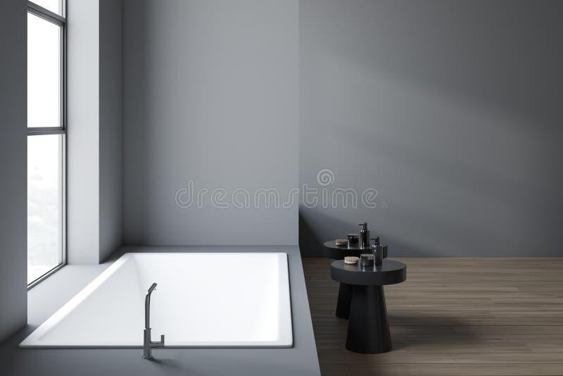 Minimalistic badar den gråa badruminre med royaltyfri illustrationer