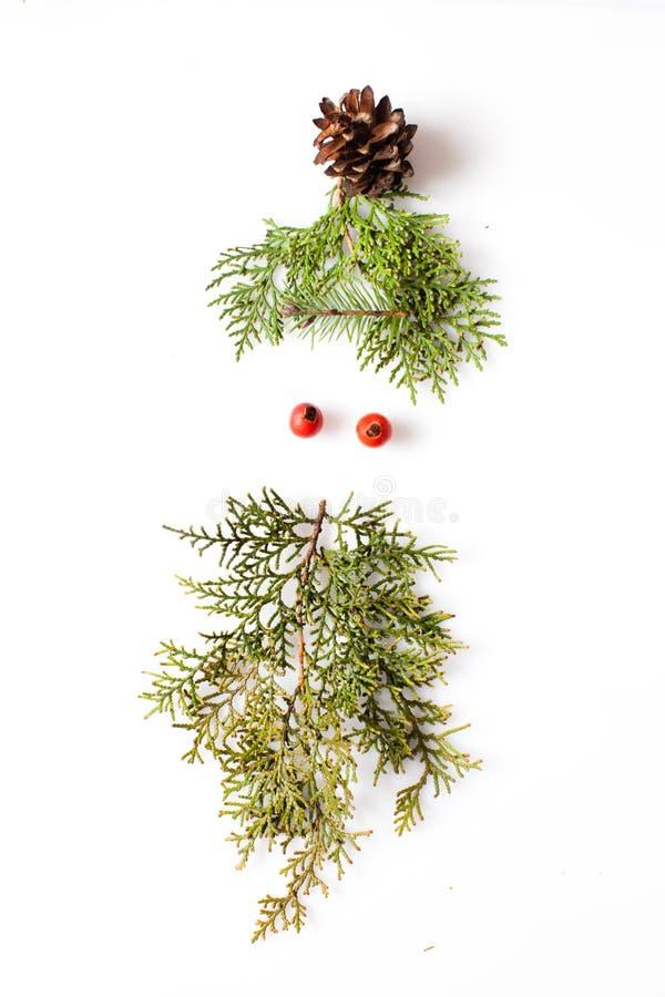 Minimalistic elfa twarz zdjęcie royalty free