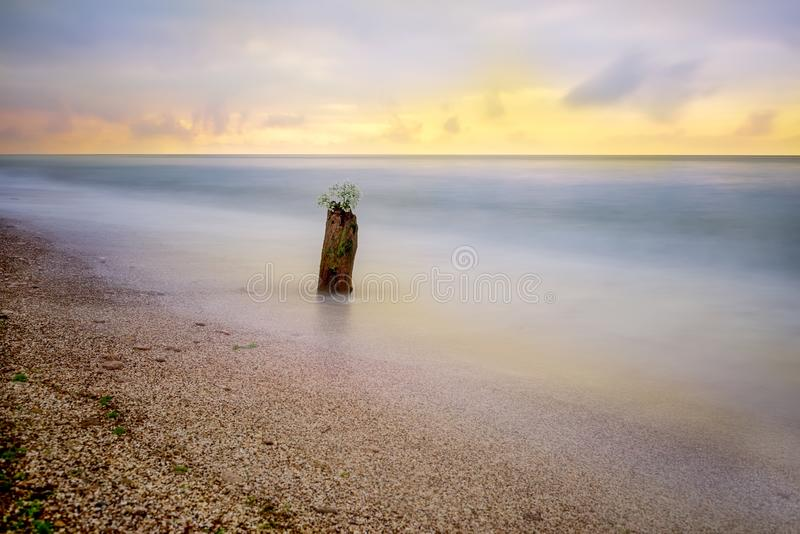Minimalistic seascape. Old stump in the water in the early morning. Long exposure. royalty free stock images
