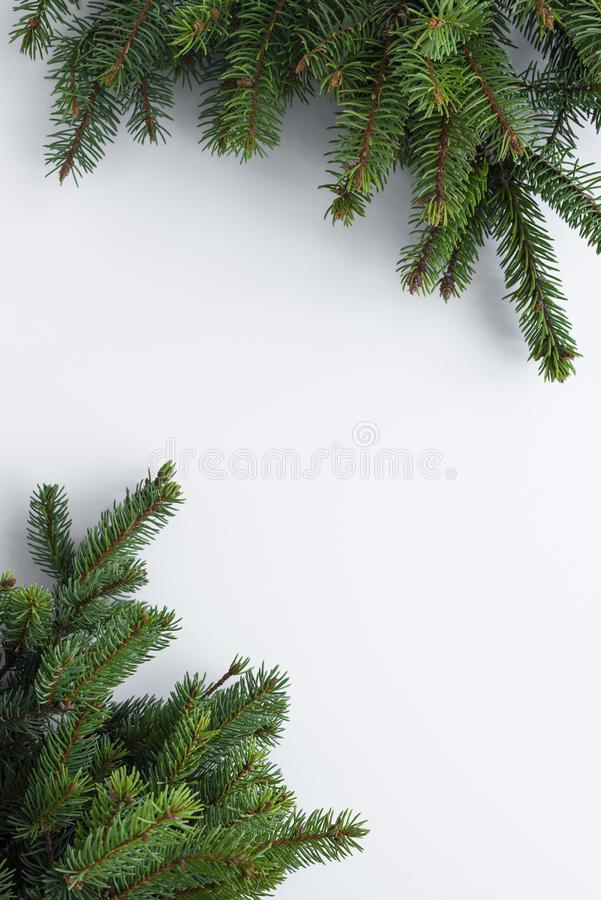 Minimalistic, vertical greeting card for Christmas wishes. Green conifer tree branches as a frame for copy space on white table. A minimalistic, vertical stock images