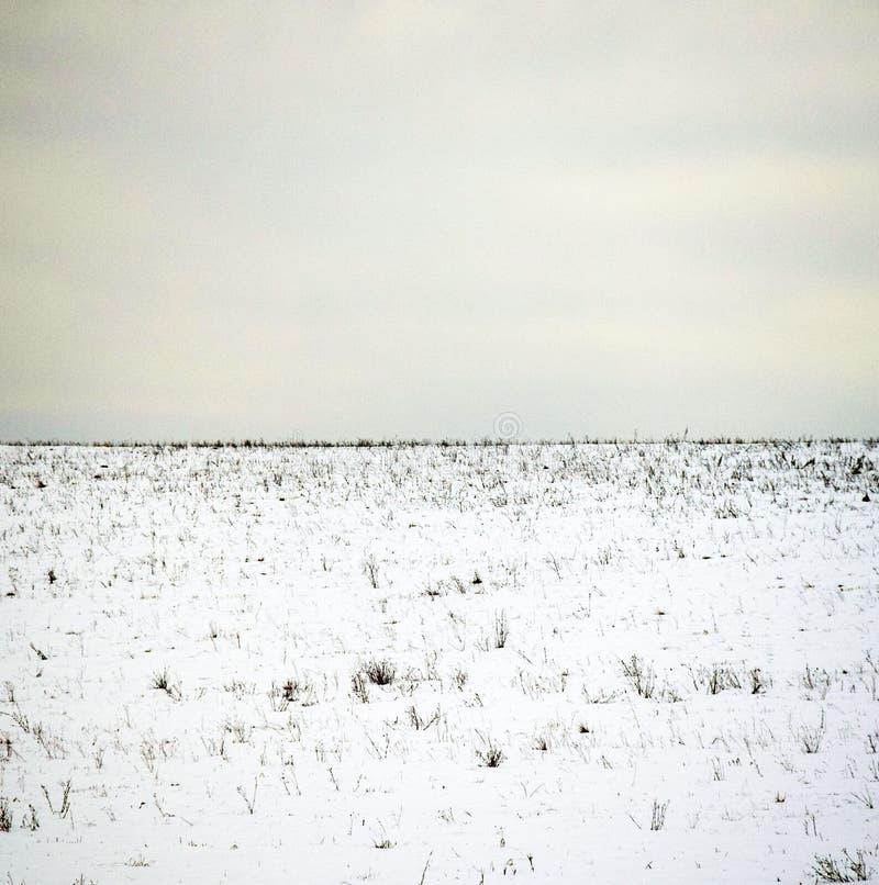 minimalistic vinter för liggande royaltyfria bilder