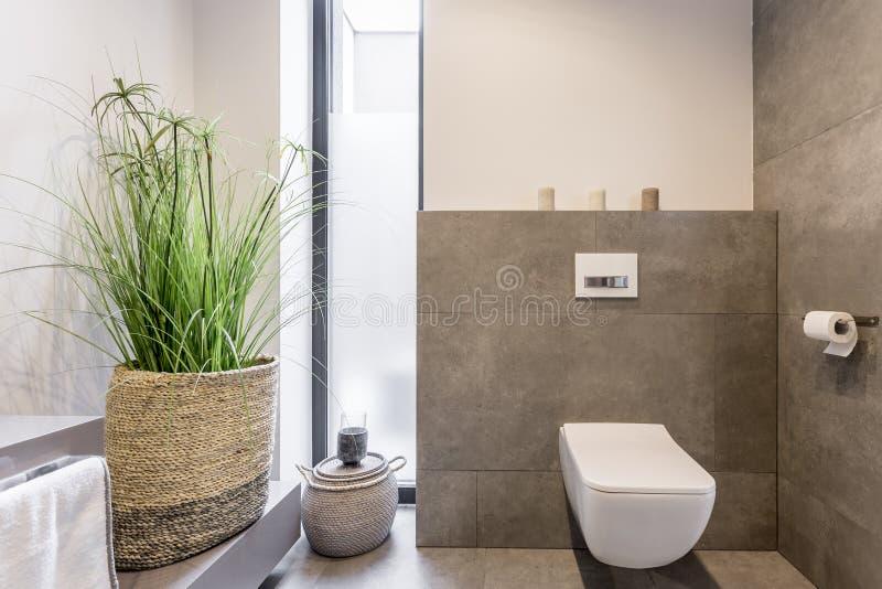 Minimalistisch toiletontwerp stock afbeeldingen