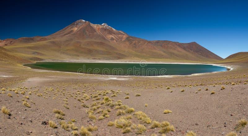 Miniques laguna w Atacama średniogórzy ogromnej panoramie zdjęcie stock