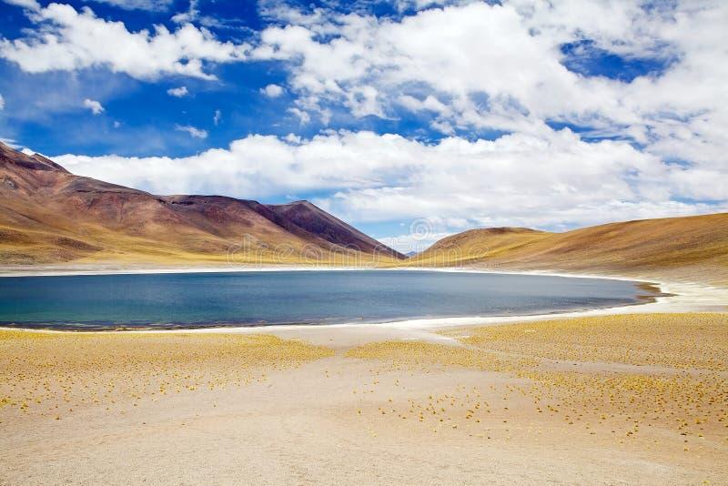 Miniqueslagune in de Atacama-woestijn, Chili stock foto's