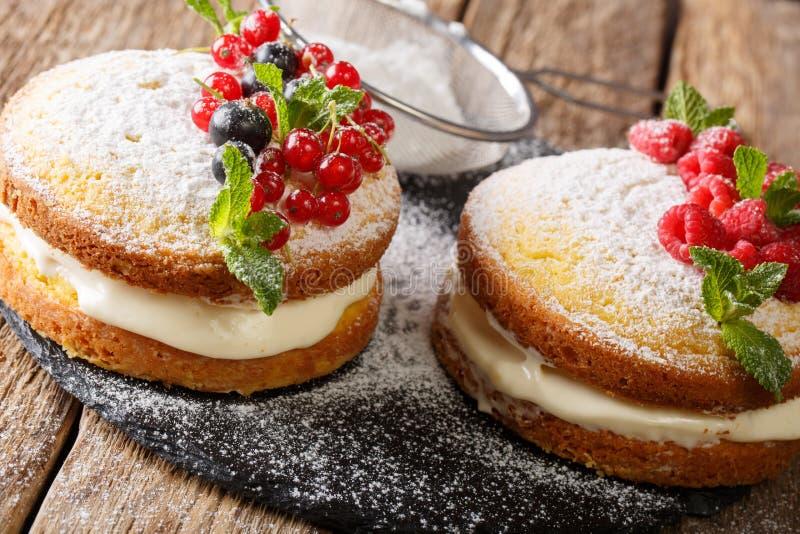 Minisandwichcake met zwarte en rode aalbes, framboos en min royalty-vrije stock foto