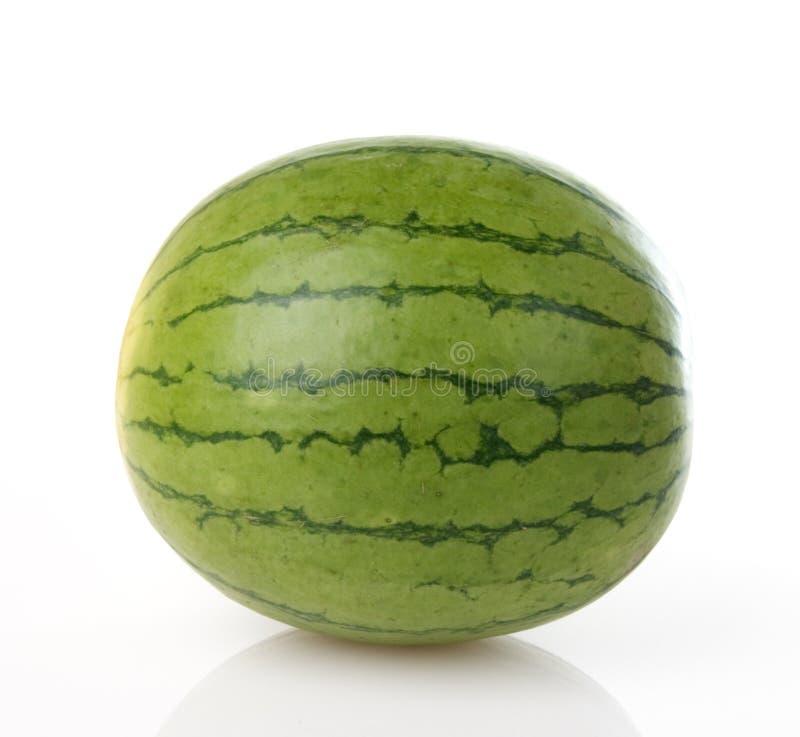 minivattenmelon arkivfoto