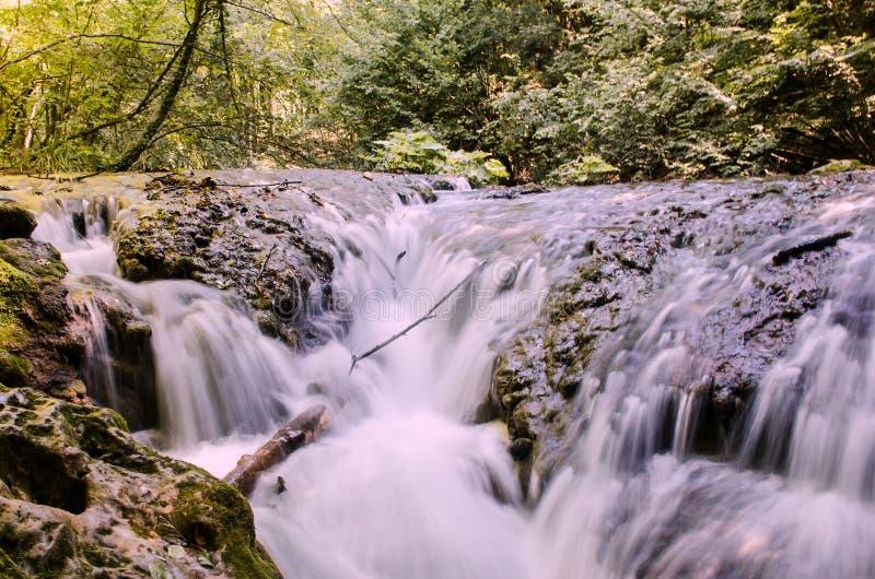 Miniwaterfall 图库摄影