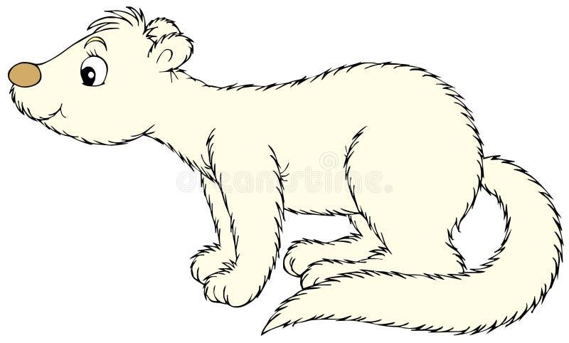Mink vector illustratie