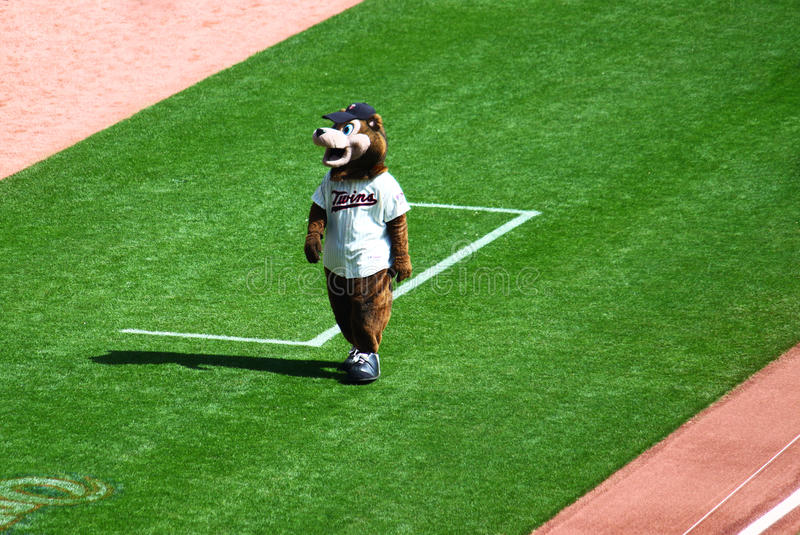 Minnesota-Zwilling-Bären-Maskottchen stockbild