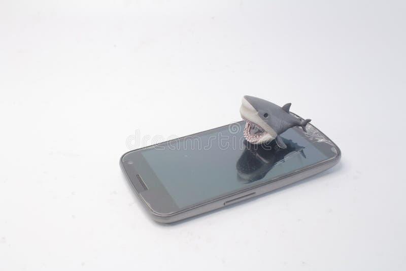 minnestavlaPCmobilen med en haj arkivbilder