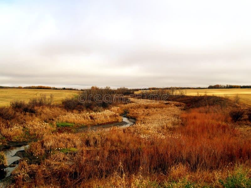 Minnewasta Creek stock images