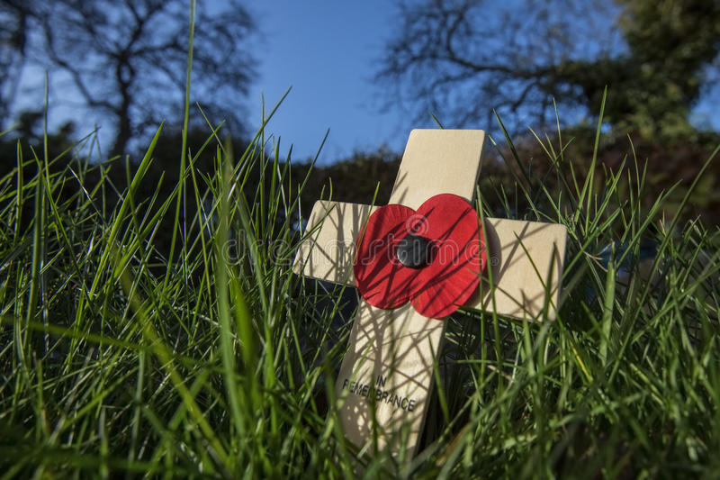 Minns de stupade hjältarna - Poppy Day arkivbilder