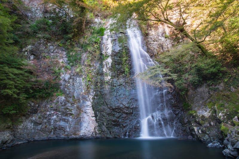 Mino cai Meiji-nenhum-mori parque Quase-nacional de Mino (cachoeira) de Mino Minoo Park Stream fotos de stock royalty free