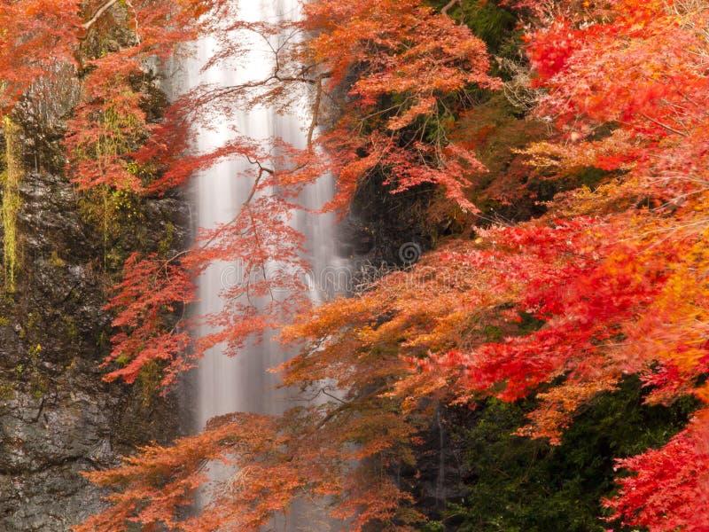 Minoh vattenfall i höst royaltyfri fotografi
