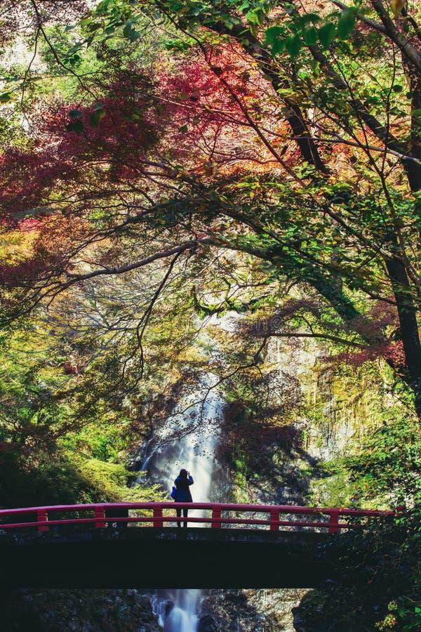 Minoh vattenfall fotografering för bildbyråer