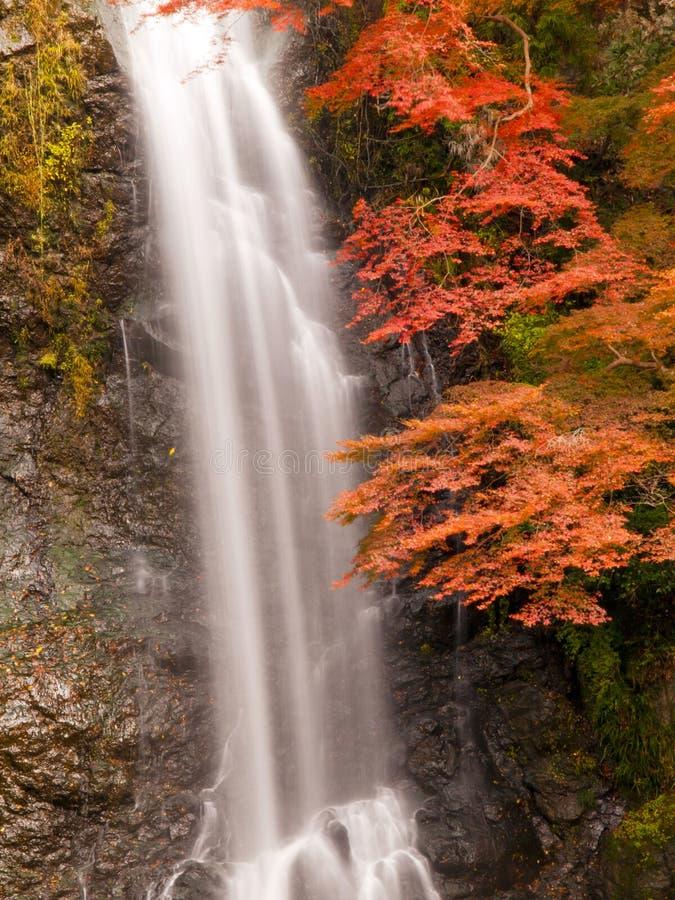 Free Minoh Waterfall In Autumn Stock Photo - 26346900