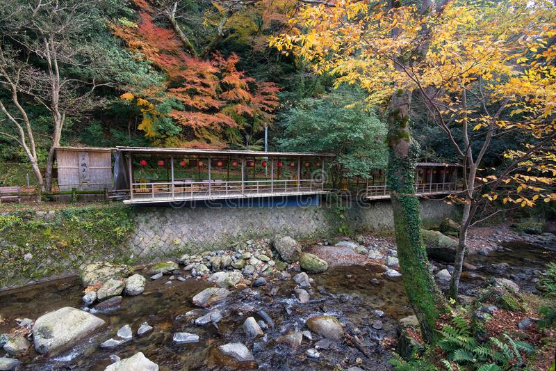 Minoo Park na estação do outono, Minoh, Osaka, Kansai, Japão imagem de stock
