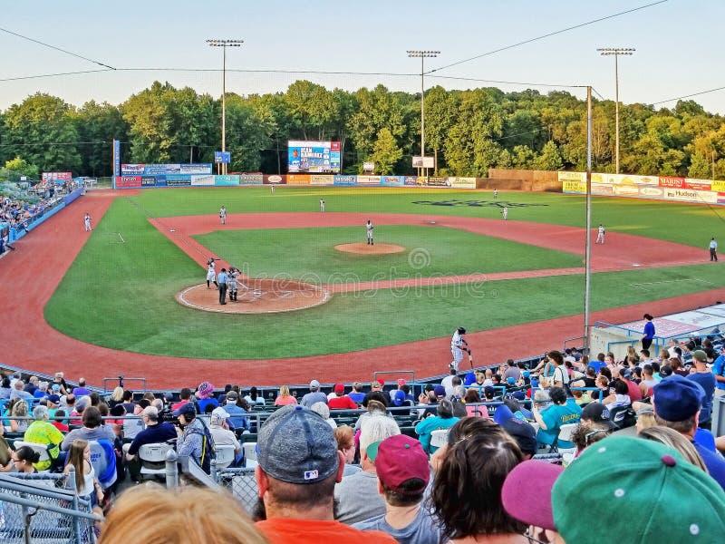 Minor League Baseball Game royalty free stock photos