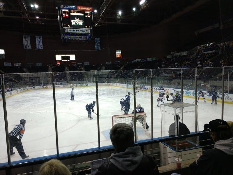 Minor League hokej na lodzie zdjęcia royalty free