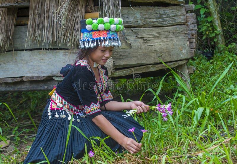 Minoria étnica de Hmong em Laos fotos de stock royalty free
