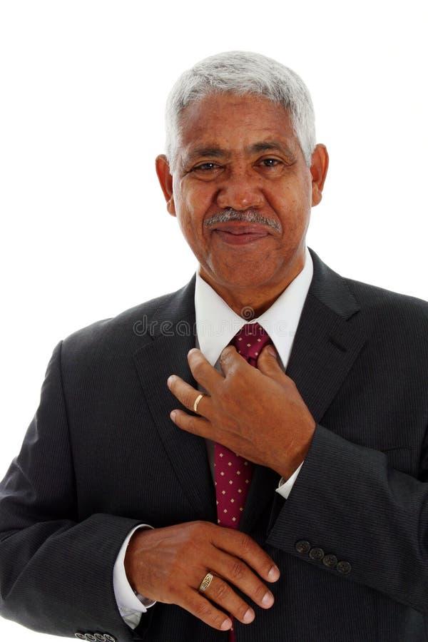 Minorität-Geschäftsmann stockbild