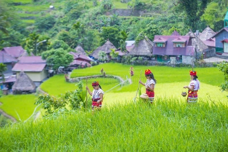 Minorité ethnique d'Ifugao aux Philippines photo libre de droits