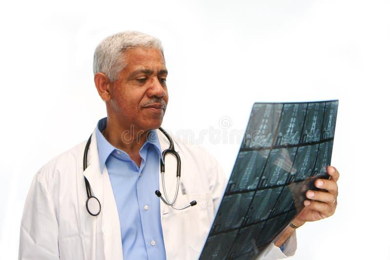 Minority Doctor royalty free stock photos