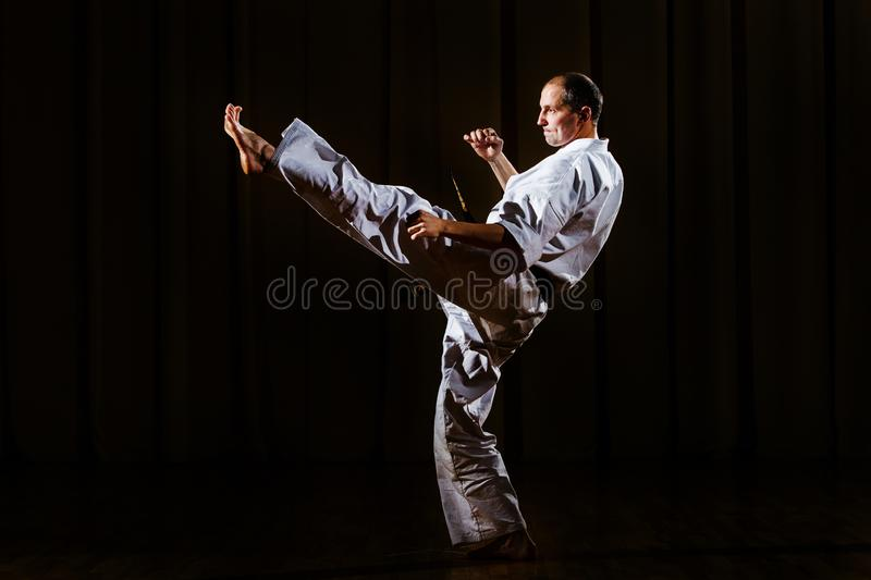 Karate master kicking stance isolated. Martial arts royalty free stock photo