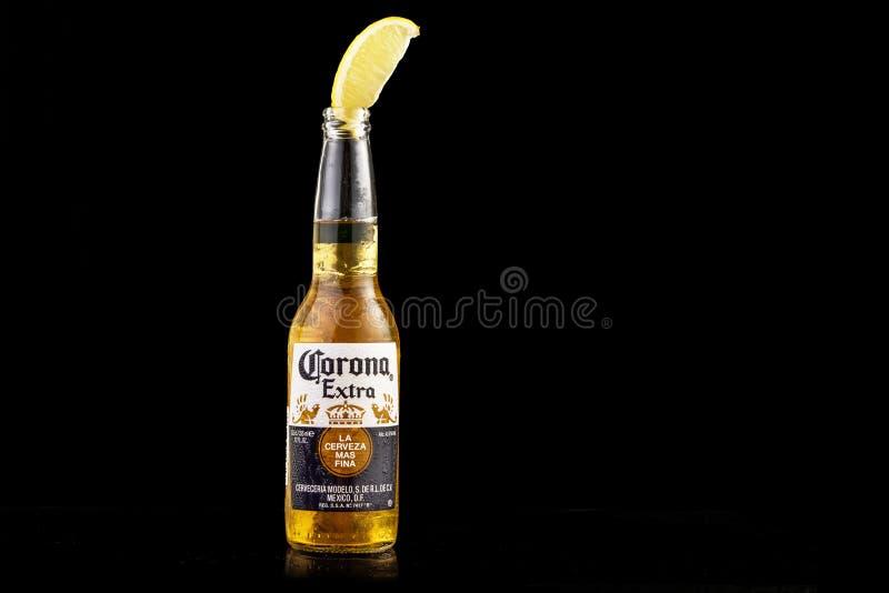 MINSK, BELARUS - 10 JUILLET 2017 : Photo éditoriale de la bouteille de bière de Corona Extra d'isolement sur le noir, un des mieu photographie stock libre de droits