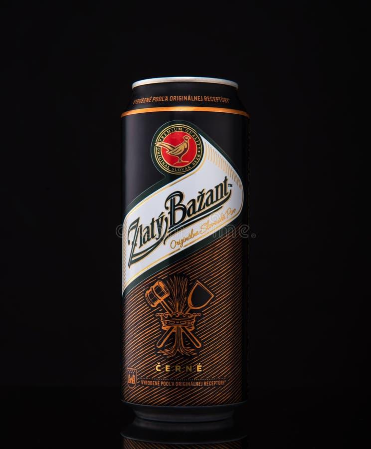 MINSK BIAŁORUŚ, STYCZEŃ, - 04, 2017: Może Zlaty Bazant piwo nad czarnym tłem Zlaty Bazant Słowacki piwny gatunek obrazy stock