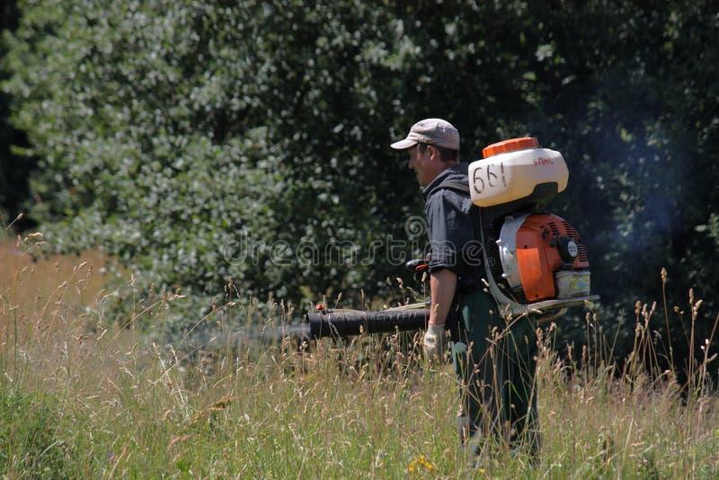 MINSK, MINSK, BIELORRÚSSIA 25 DE JUNHO DE 2019 um trabalhador trata ervas daninhas com os produtos químicos em um parque da cidad imagens de stock royalty free