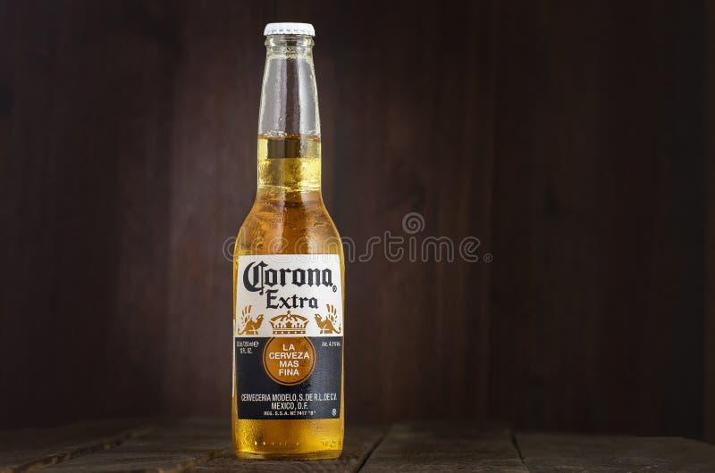MINSK VITRYSSLAND - JULI 10, 2017: Redaktörs- foto av flaskan av Corona Extra öl på wood bakgrund, en av överkanten royaltyfri foto