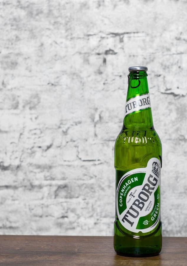 Minsk Vitryssland - November 25, 2018: flaska av Tuborg gräsplanöl på trätabellen på grå väggbakgrund arkivfoto