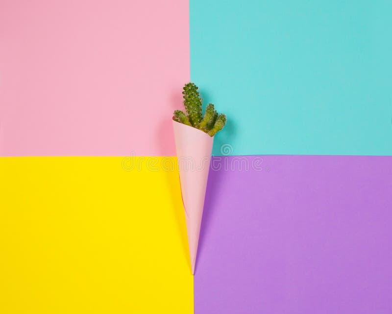 Minsta mode Stillife Moderiktiga ljusa färger Grön kaktus av glass på färgrik bakgrund royaltyfri foto