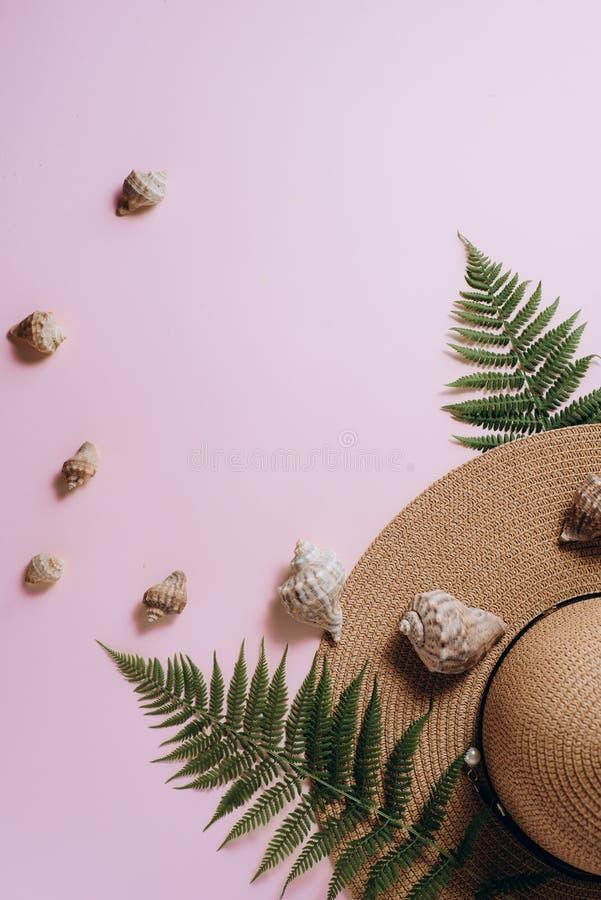 Minsta sommarbakgrund Tropiska ormbunkebladfilialer, hatt och snäckskal på rosa bakgrund Kvinnlig modeblogg, socialt massmedia royaltyfri bild