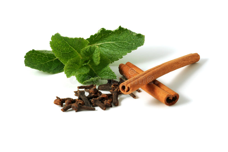 Mint cloves and cinnamon royalty free stock image
