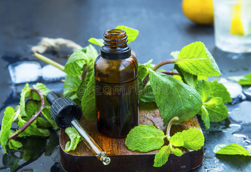 Mint essential oil in bottle .Fresh peppermint leaves with essen. Tial oil, alternative medicine stock images