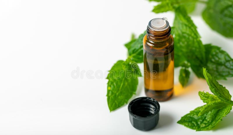 Mint essential oil bottle and green leaf on white background royalty free stock photo