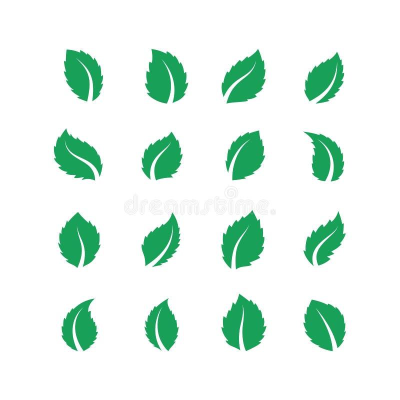 Mint leaves Blad för pepparmintMelissagräsplan, ny ecomatetikett, växt- lantgårdväxt för strikt vegetarian, grönmyntablad Vektorl stock illustrationer