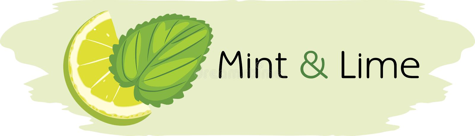 Mint and lime. Drawing for label design stock images