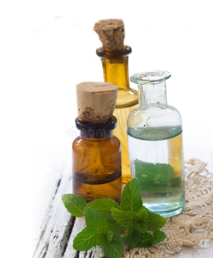 Mint oils royalty free stock photos