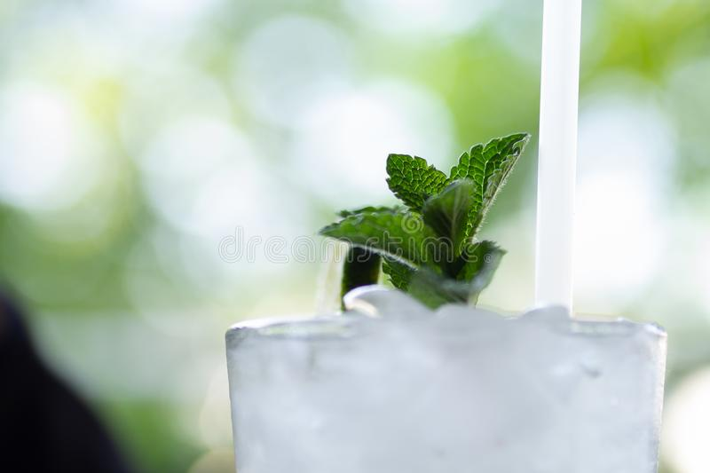 Mint sprig on the top of a refreshing mojito cocktail. With a straw royalty free stock photo