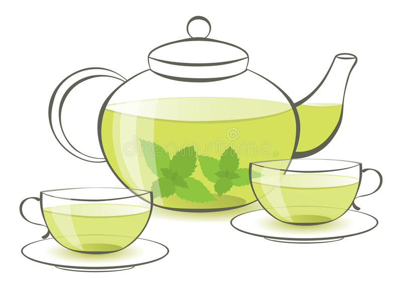 Download Mint tea stock vector. Image of beverage, graphic, plant - 25875906