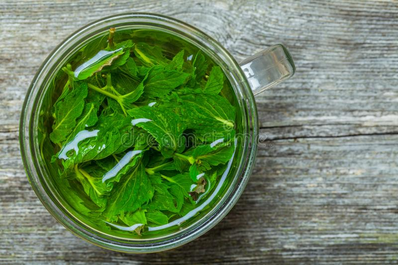 Mint tea on the table. Freshly made mint tea on the wooden table stock photos