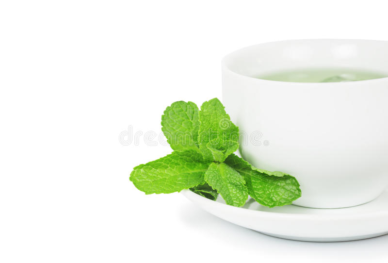Mint tea. In white ceramic cup and a sprig of fresh mint and saucer, close-up isolated on white background royalty free stock photo