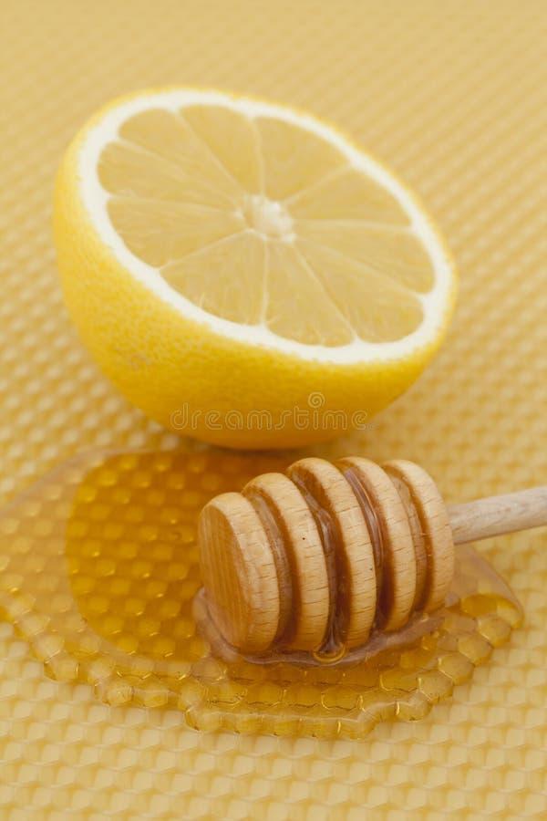 miodowa cytryna obraz stock