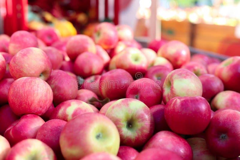 Miodowego chipsa jabłek owoc czerwony tło obraz royalty free