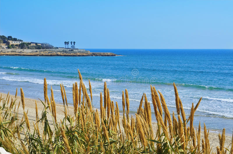 Download Miracle Beach In Tarragona, Spain Stock Photo - Image: 24048892